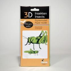 3D Papiermodell - Heuschrecke